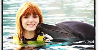 la adoro porque ama a los delfines