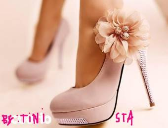 zapato cool