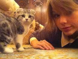 Taylor y Meredith