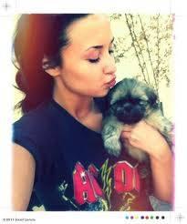 El perrito de Demi Lovato ¡HAY COSITAAA!