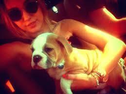 Miley Cyrus y Ziggy