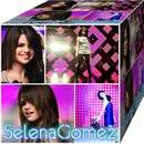 http://www.facebook.com/pages/Selena-Maried-Gomez/223270114387249