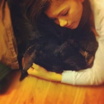 Zendeya y su perro o sola