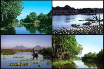 Reserva Natural de Monterrico
