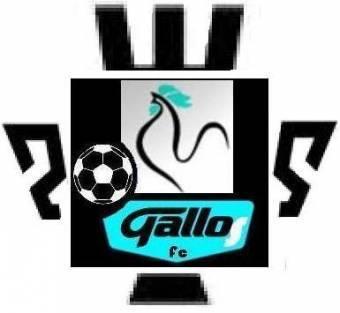 Gallos Copa