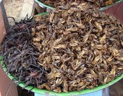 la ensalada de hormigas y otro vicho