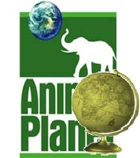 Mejor Canal de Cultura-(Animal Planet)