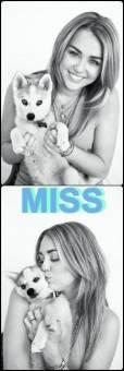 Miley mi idola a seguir siempre . . .