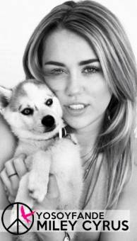 Yo soy fan de Miley Cyrus