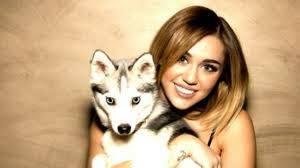 Miley y Husky