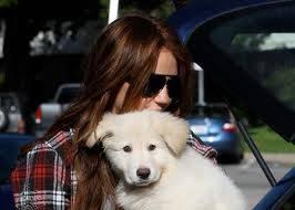 Miley y Mate su perrito