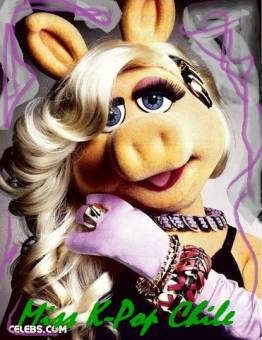 Piggy - K-Passion Chile