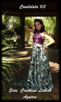 Srta. Cristhian Lisbeth Aguirre, Reparto Las Palmeras