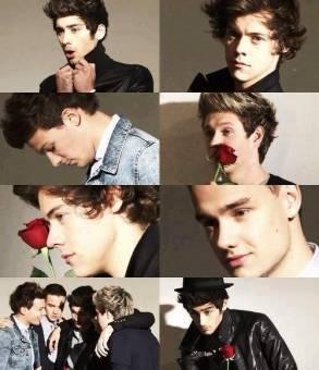 One Direction (LOS AMO)
