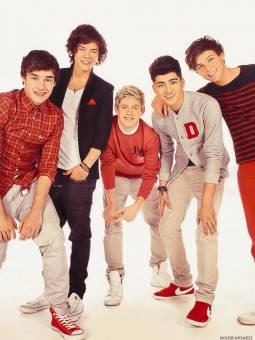 One Direction Perfection♥:) !!!