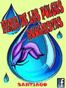 Creado por Paola Muñoz Arellano