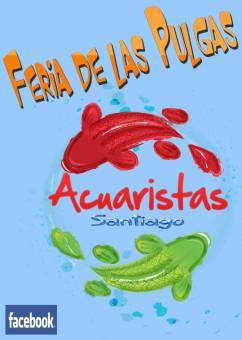Imagen creada por Paola Muñoz Arellano