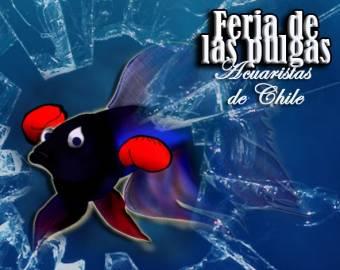 Imagen creada por Manuel Valdes Lobos