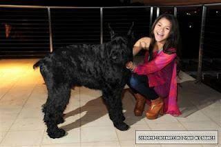 Zendaya SI tiene mascota, y la quiere mucho.