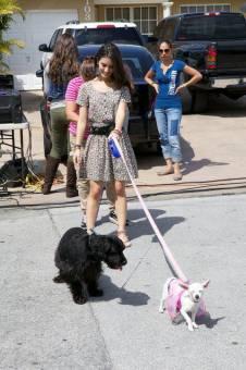 Sol Rodriguez y sus cachorritos