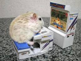 hamster jugando a las maquinitas y haciendo ejercicio