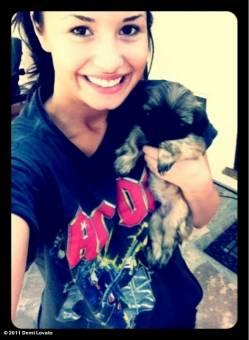 La Mascota De Demi