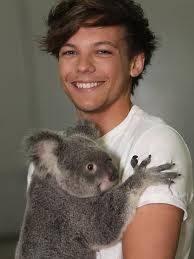 Louis cargando un koala