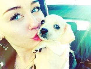 La hermosa Miley Cyrus