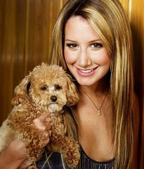 ashley tisdale y su perrito