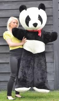 Panda peluche gigante (170cm)