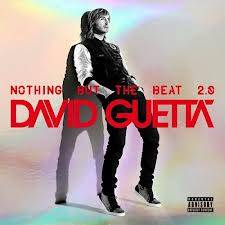 Nothing But The Beat 2.0 (David Guetta)